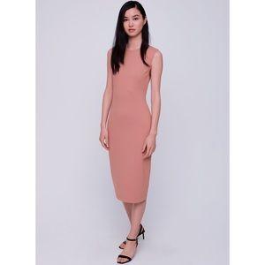 Aritzia Babaton Sleek Dress